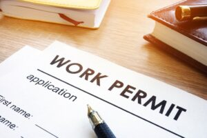 Eligibility requirements for the work permit